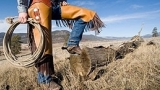 Ethnic style - Cow Boy