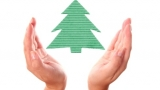 How to choose an environmentally friendly Christmas tree and decorations