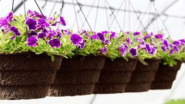 Plan a planter