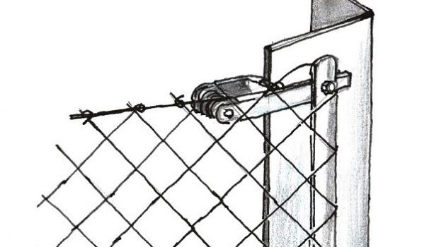 Wire mesh fence: constructive ideas