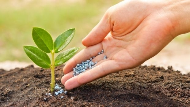 Manures and organic fertilizers